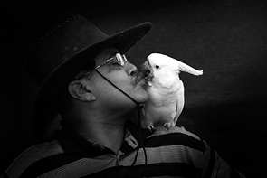 The Kiss by Rajesh Dhar